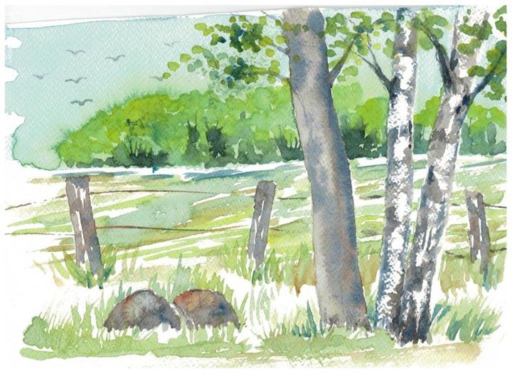 Akvarel - sommer