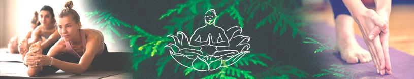 Ananda Yoga holdtræning